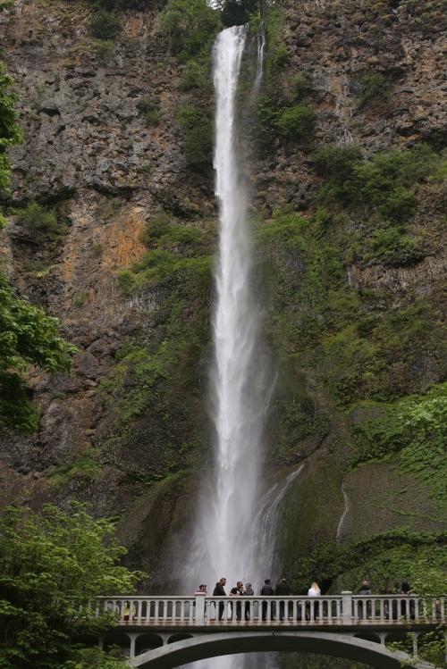 600 foot Multnomah Falls